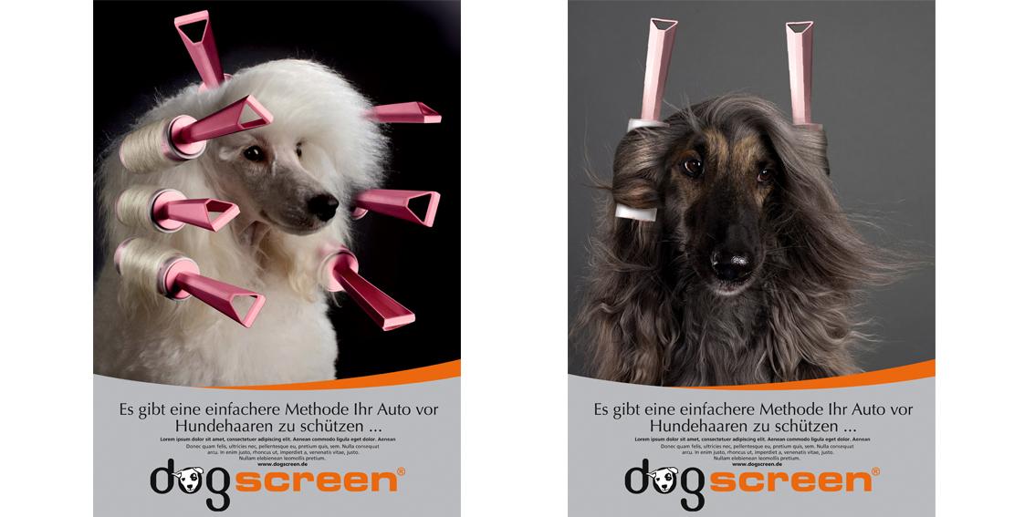 1134x567__dogscreen_motive
